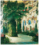 Tavla av Blechen, karl - Interior Of A Palm House